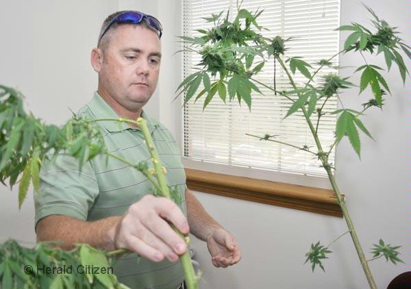 http://www.cookevillesucks.com/images/marijuana.jpg